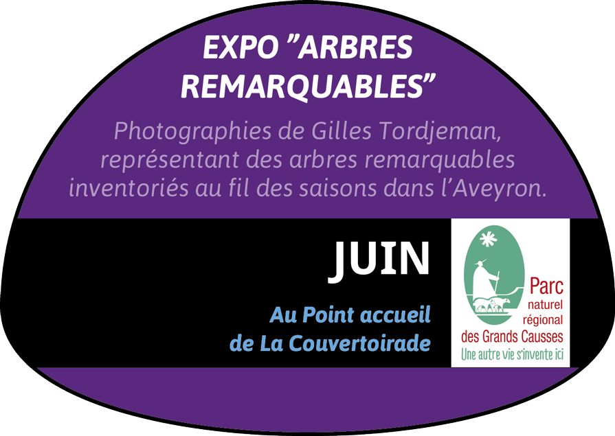 """Expo """"Arbres remarquables"""""""