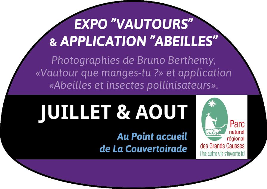 """Expo """"Vautours"""" et application """"Abeilles"""""""